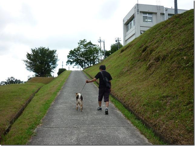 201608真夏のダム散歩日野川-18
