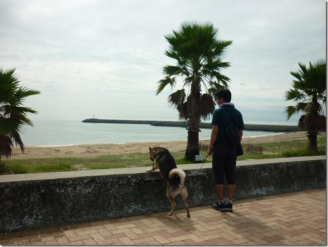 201609海散歩1-02