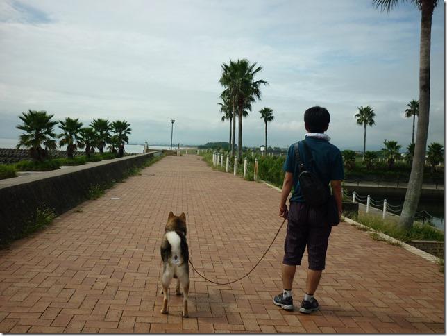201609海散歩1-04