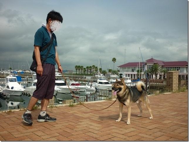 201609海散歩1-07
