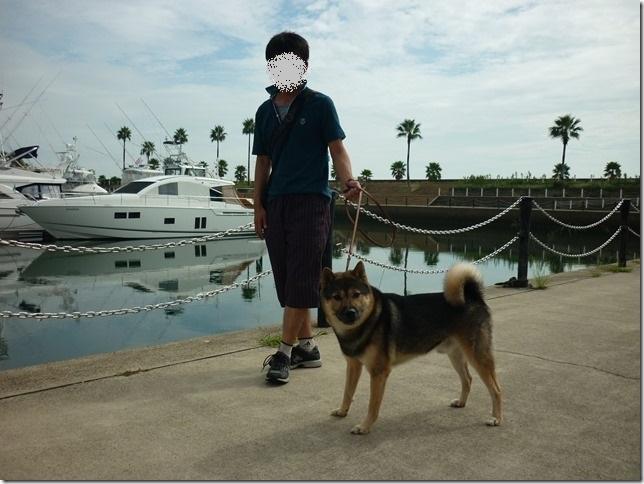 201609海散歩1-12