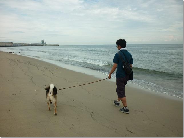 201609海散歩2-11