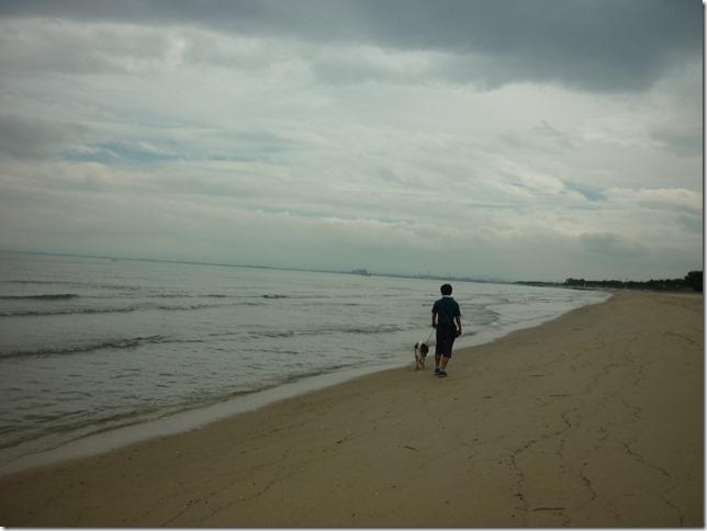 201609海散歩2-26