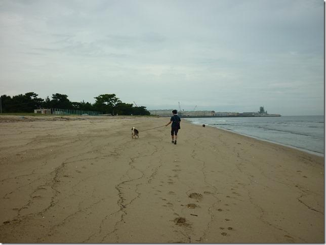 201609海散歩2-27