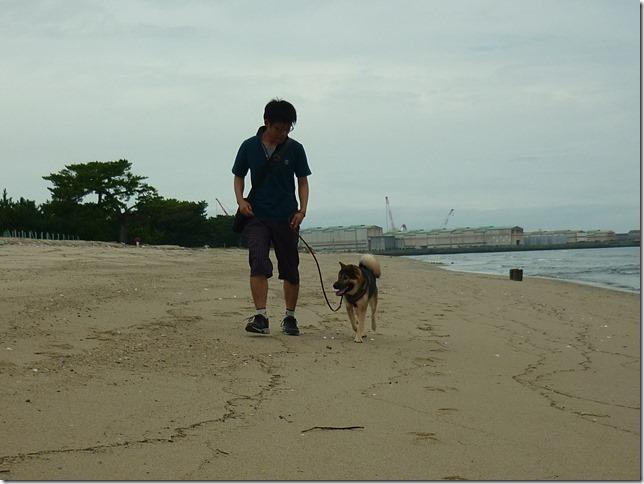 201609海散歩2-28