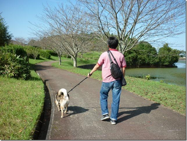 201610休日公園散歩01