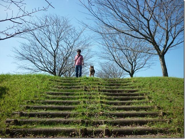 201610休日公園散歩02