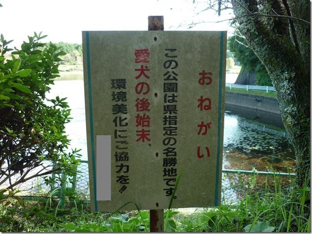 201610休日公園散歩09
