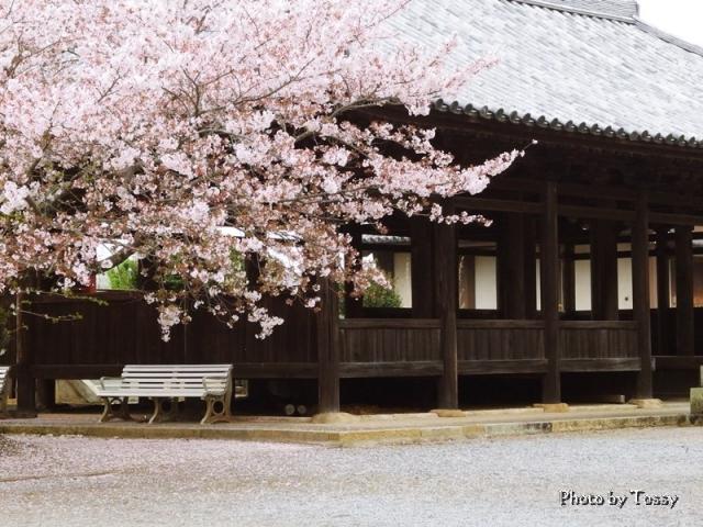 八幡宮拝殿