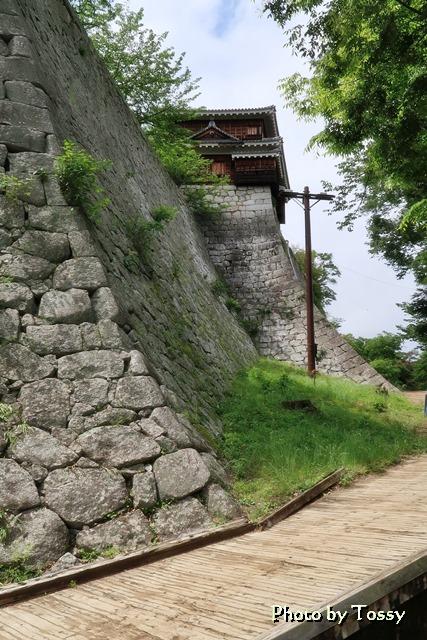 巽櫓下の石垣