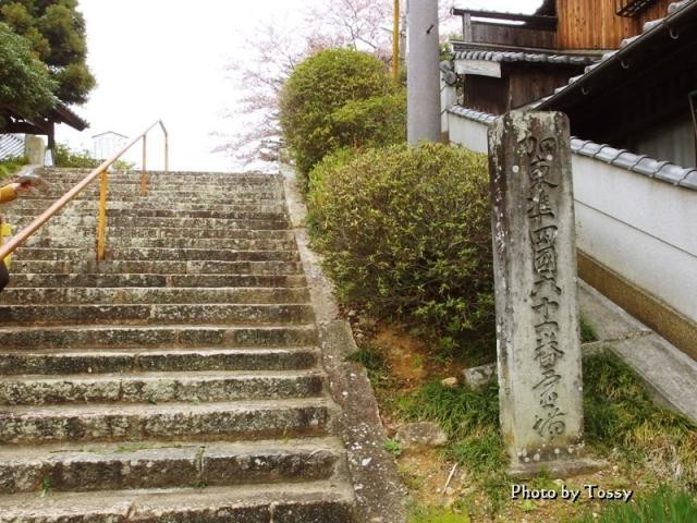 浄土寺参道石段