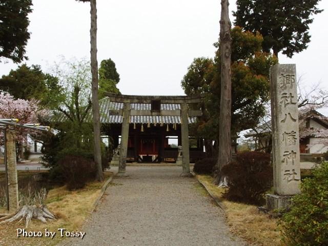 鎮守八幡神社拝殿・本殿