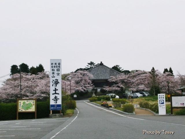 国宝浄土寺全景