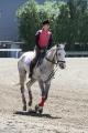 160512誘導馬の練習風景3