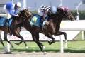 新馬戦:レース