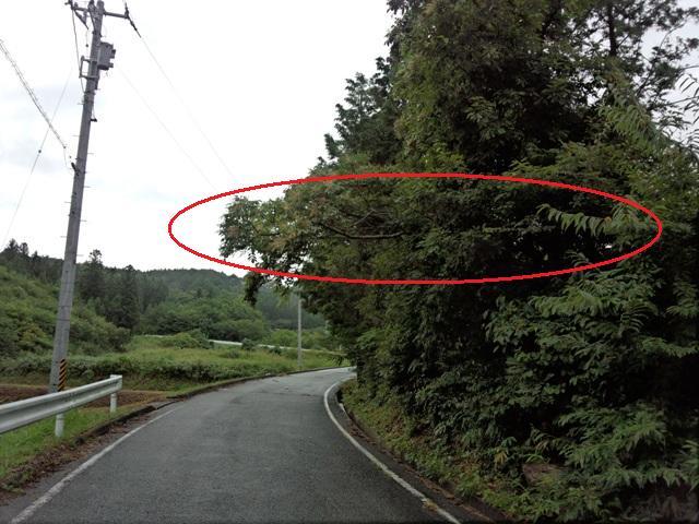 台風被害0820