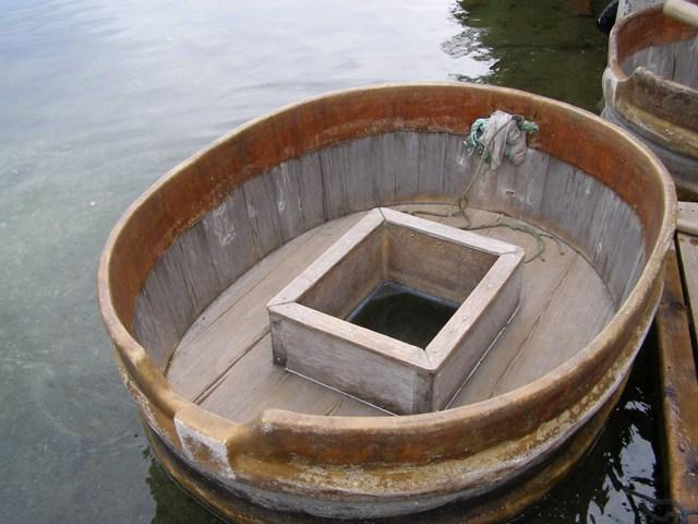 たらい舟20903
