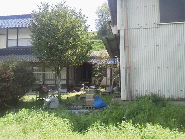 28424subako1.jpg