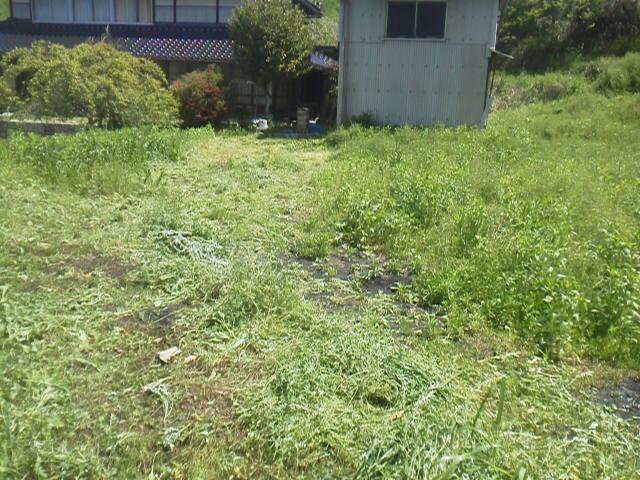 28501subako2.jpg