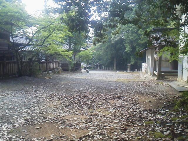 28717suzuoka4.jpg