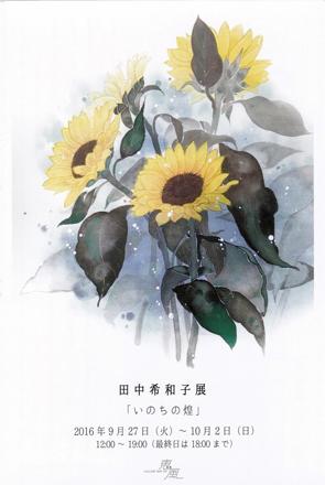 tanaka kiwako_dm