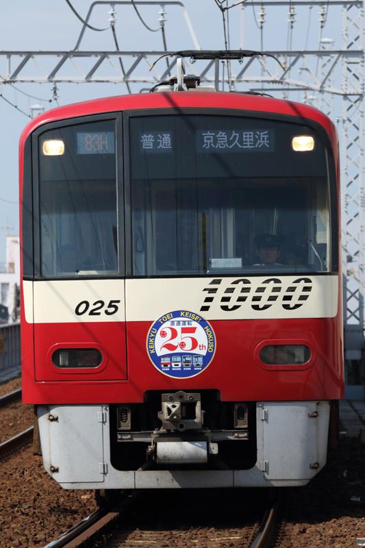 ED5A1867.jpg
