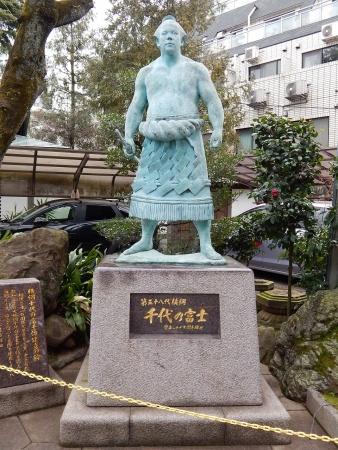 千代の富士1