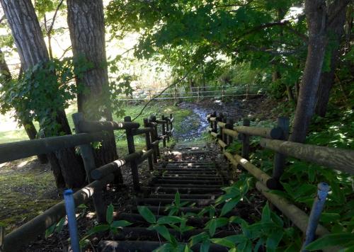平岡北公園 湿地への階段