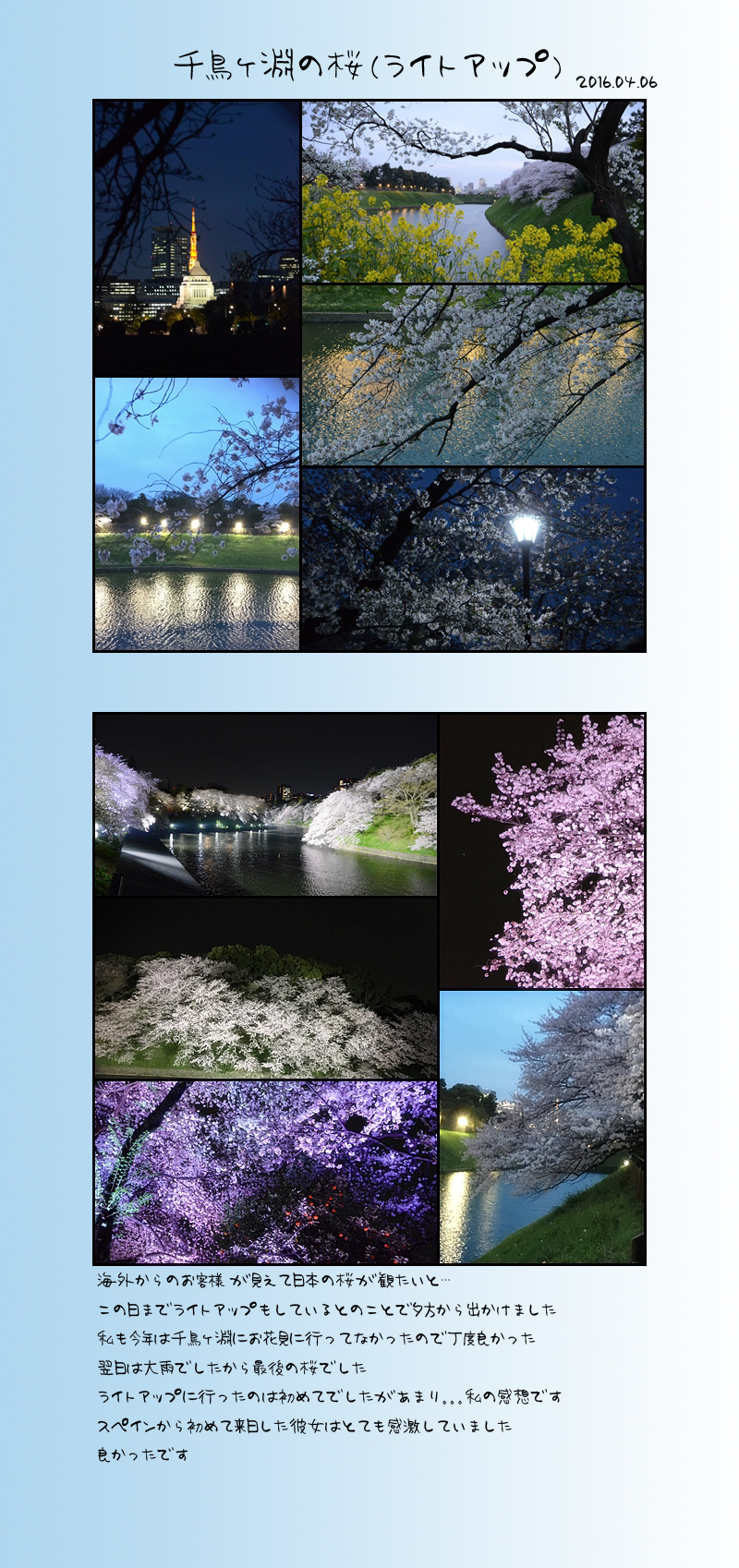 4月25日桜3