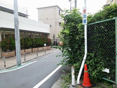 160709mejiro.jpg