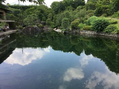 160729mejiro.jpg