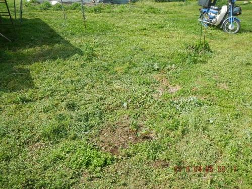 農機置き場の整地作業 (2)