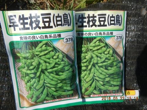 大豆 (2)
