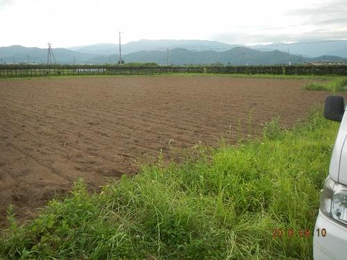 桔梗農場そば (2)