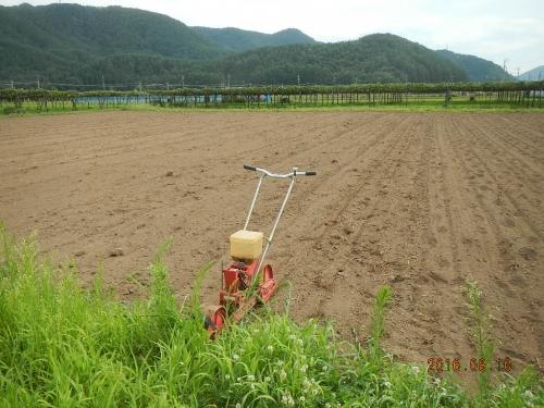 桔梗農場そば (1)