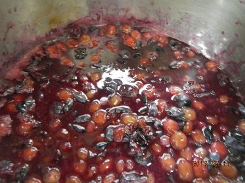 ぶどう液作り (5)