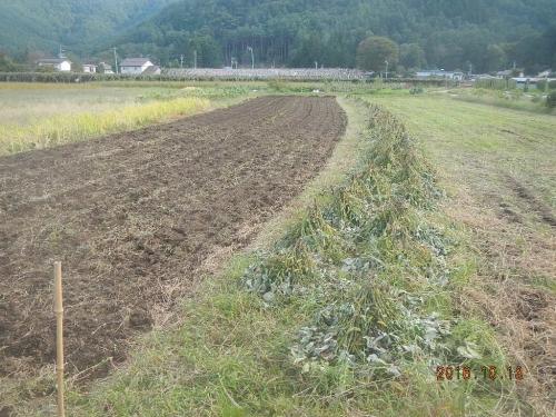 徳永農場 (2)
