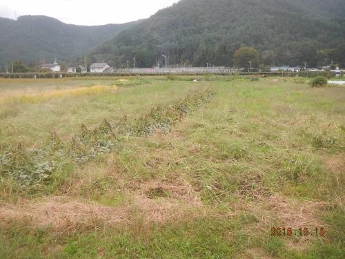 徳永農場 (1)
