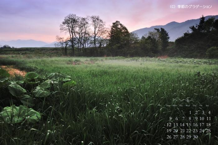 開田高原9