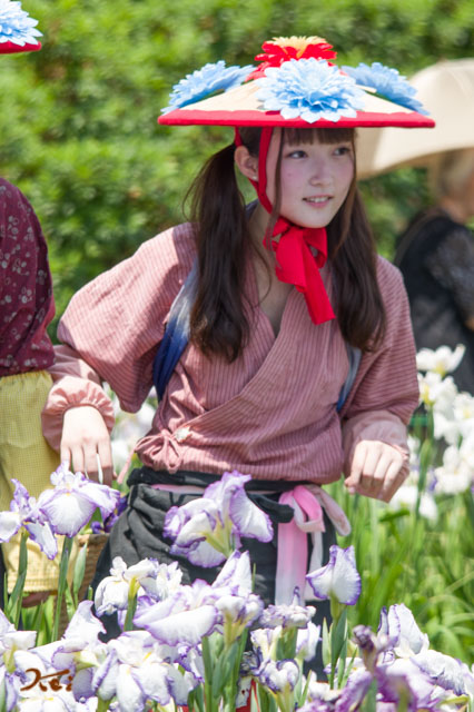 20160611花摘み娘15