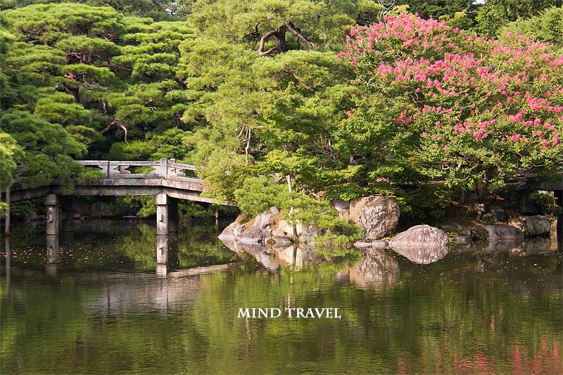 京都御所 池と百日紅2