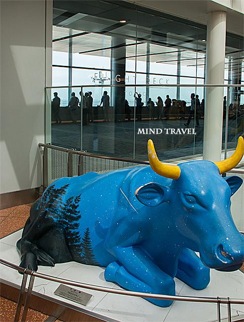 羽田空港 mooon