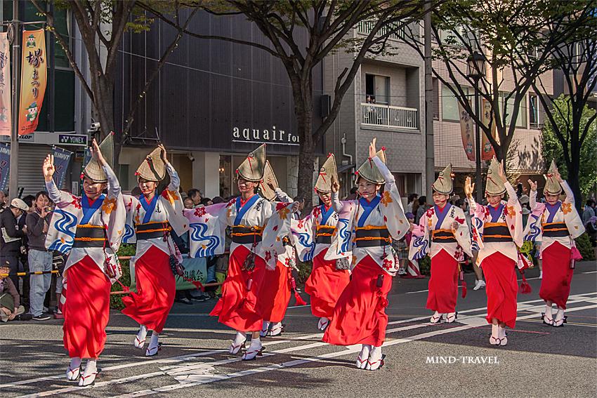 堺祭 阿波踊3