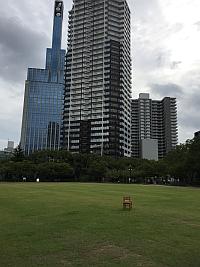 三宮東遊園地の芝生、会議で三宮へ