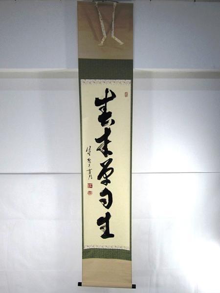 小野澤寛海 肉筆 「春来草自生」 掛軸