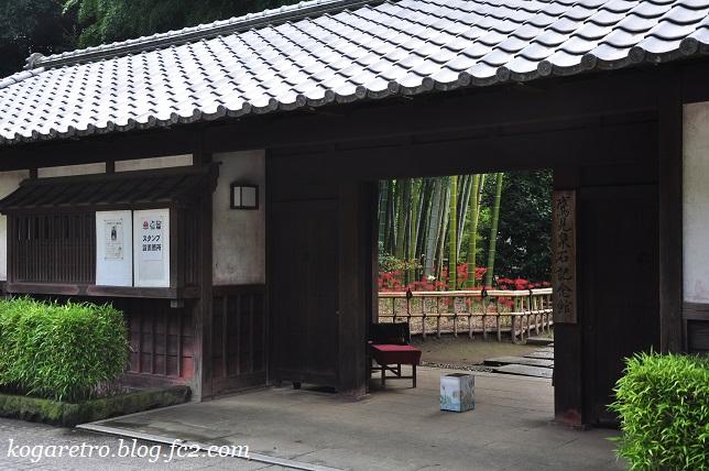 2016鷹見泉石記念館の彼岸花