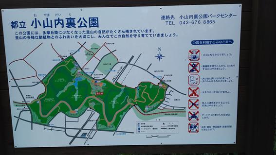 161008 散歩09