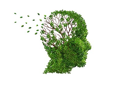 160930 dementia