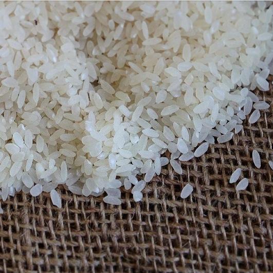 国産リゾット米