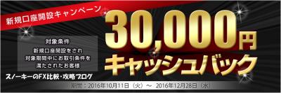 アイネットFX30000円キャッシュバックキャンペーン